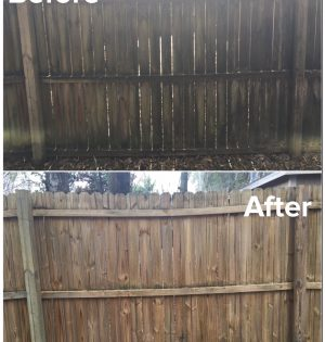 recentfencecleaning