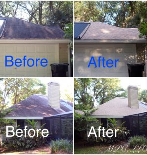 recentchemicalroofcleaning